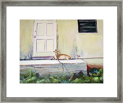 Framed Print featuring the painting Bahama Goat by Patricia Piffath