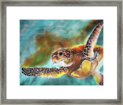 Bahamian Turtle Dove Framed Print