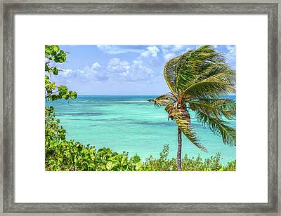 Bahia Honda State Park Atlantic View Framed Print by John M Bailey