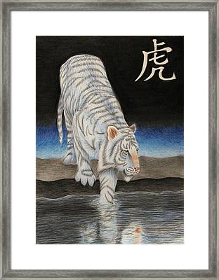 Bai Hu Framed Print by Lauren Cawthron