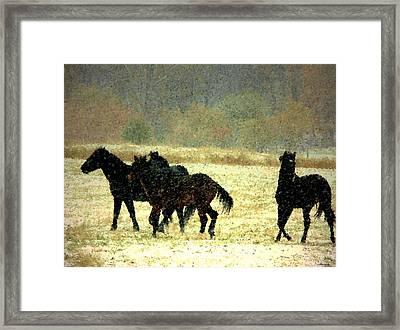 Bailando De Los Caballos En Viento Y Nieve Framed Print by Anastasia Savage Ealy