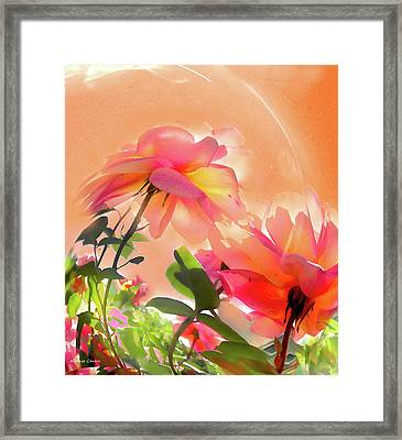Framed Print featuring the photograph Baile Floral by Alfonso Garcia
