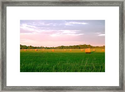 Bailed Evening Framed Print