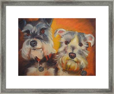 Bailey And Casey Framed Print by Kaytee Esser