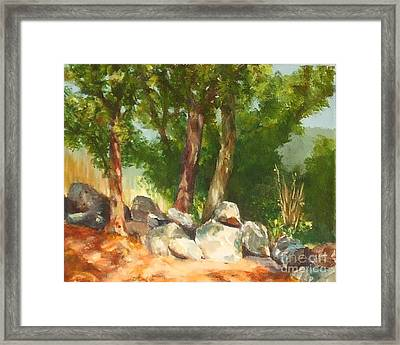 Baking In The Sun Framed Print