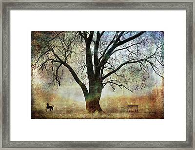 Balance And Harmony Framed Print