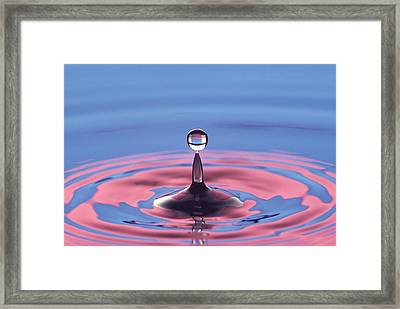 Balance In Nature. Framed Print