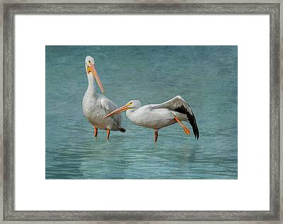 Framed Print featuring the photograph Balance by Kim Hojnacki