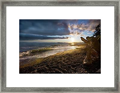 Balanced Evening Framed Print by Mike Reid