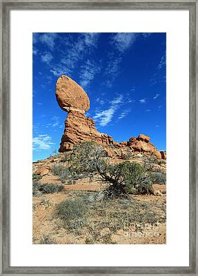Balanced Rock And Desert Tree Framed Print by Mary Haber