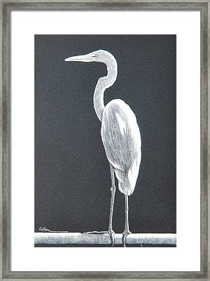 Balancing Act Framed Print by Diane Cutter