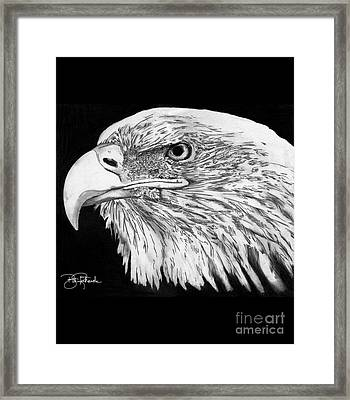 Bald Eagle #4 Framed Print by Bill Richards