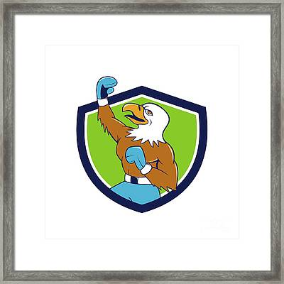 Bald Eagle Boxer Pumping Fist Crest Cartoon Framed Print