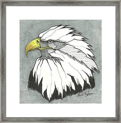 Bald Eagle, Head Framed Print