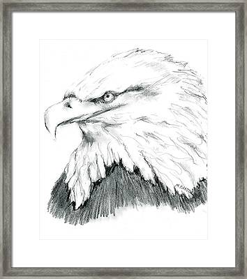 Bald Eagle Framed Print by Marilyn Barton