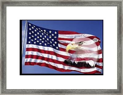 Bald Eagle On Flag Framed Print