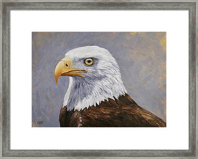 Bald Eagle Portrait Framed Print by Crista Forest