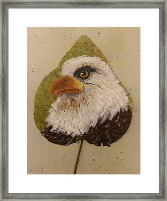 Bald Eagle Side Veiw Framed Print