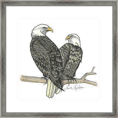 Bald Eagles, Pair Framed Print