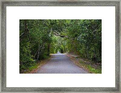 Bald Head Island Study 5 Framed Print