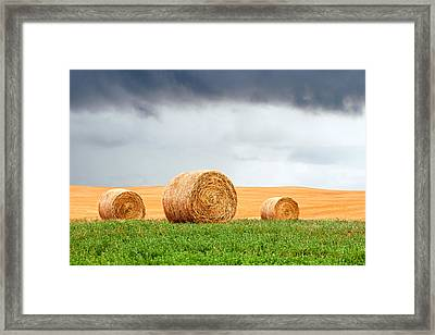 Bales And Layers Framed Print