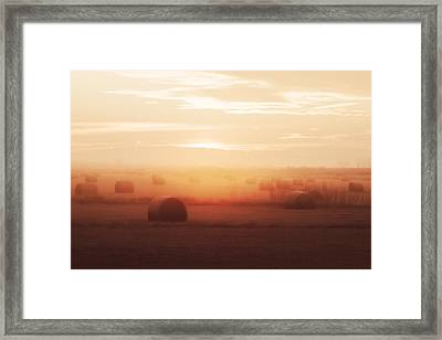 Bales In The Mist Framed Print