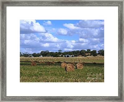 Bales Of Hay Framed Print