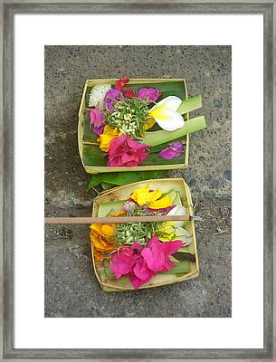 Balinese Offering Baskets Framed Print by Mark Sellers