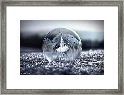 Ballet In A Bubble Framed Print