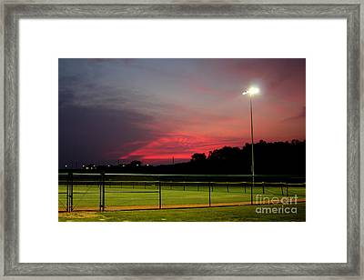 Ballpark Beauty Framed Print by Lynn Reid