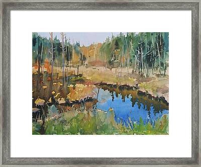 Bally Road Bog Framed Print by Spencer Meagher