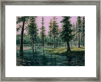 Balm Creek Reflections Framed Print by Lynne and Don Wright