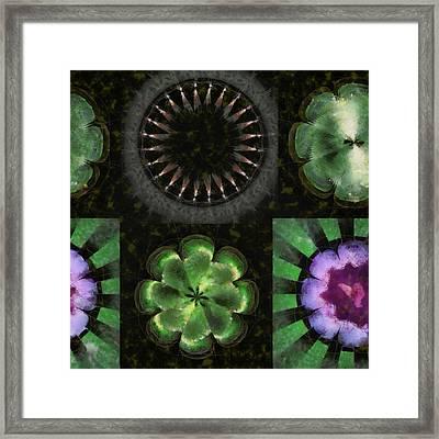 Balneological Constitution Flowers  Id 16165-163229-51840 Framed Print