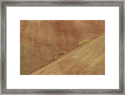 Balsam In Painted Hills Diagonal Framed Print by Jean Noren