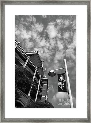 Baltimore Ravens National Football League Stadium Framed Print