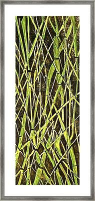 Bambo Garden Framed Print