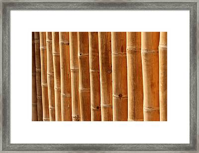 Bamboo 5 Framed Print by Heike Hultsch