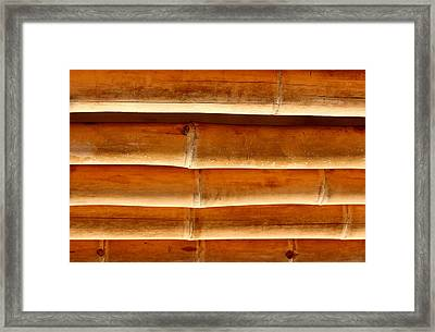 Bamboo 6 Framed Print by Heike Hultsch
