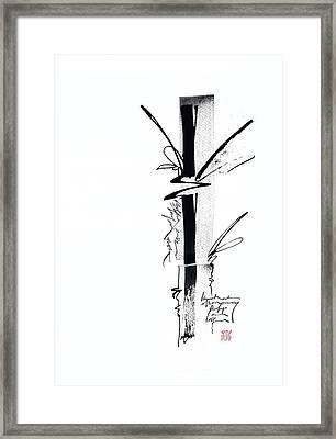 Bamboo 6 Framed Print