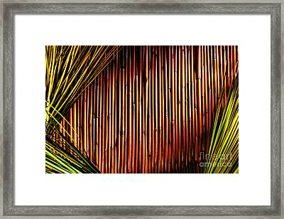 Bamboo And Grass Framed Print