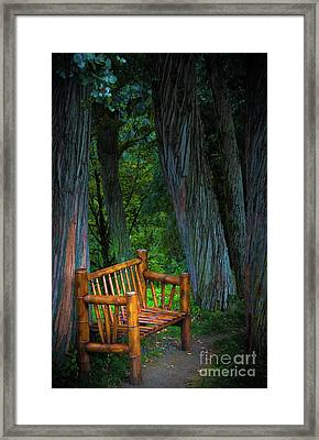 Bamboo Bench Framed Print by Svetlana Sewell