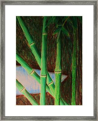 Bamboo Forest Framed Print by Bruce Byrnes