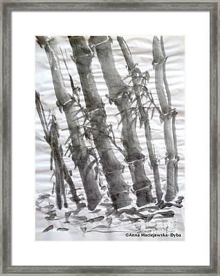 Bamboo Grove 3 Framed Print by Anna Folkartanna Maciejewska-Dyba
