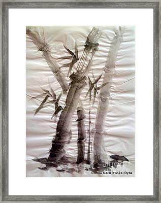 Bamboo Grove Framed Print by Anna Folkartanna Maciejewska-Dyba