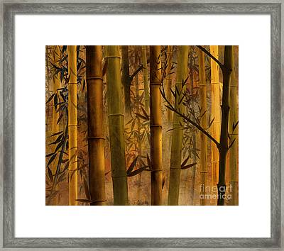 Bamboo Heaven Framed Print by Peter Awax