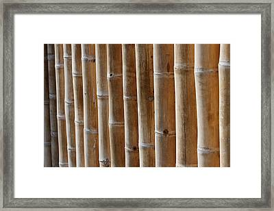 Bamboo  Framed Print by Heike Hultsch