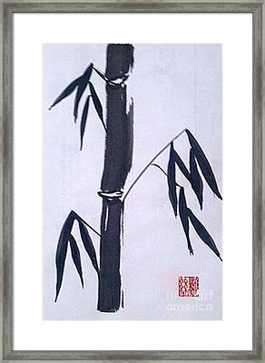 Bamboo In Black And White Framed Print