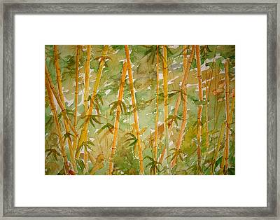 Bamboo Jungle Framed Print