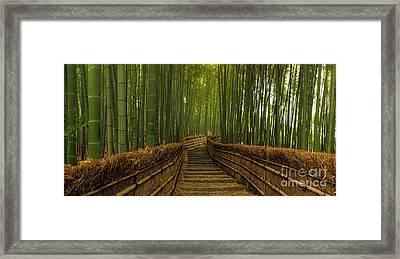 Bamboo Panorama - Kyoto Japan Framed Print