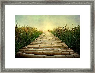 Bamboo Path In Grass At Sunrise Framed Print by Atul Tater